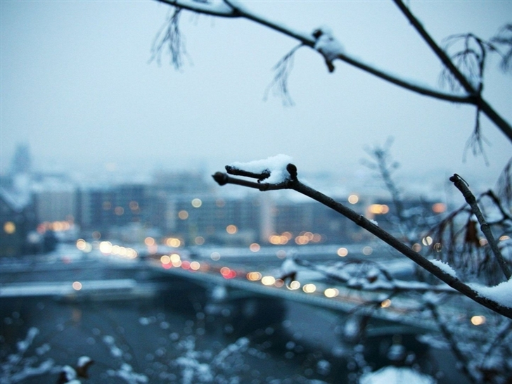 Snowy Branch With The City In The Background Mac Wallpaper