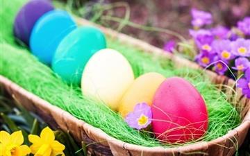 Cool Easter Eggs Mac wallpaper