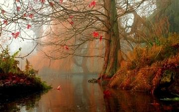 Nature Trees Autumn Rivers Mac wallpaper