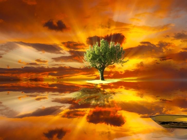 Amazing Tree Landscape Mac Wallpaper