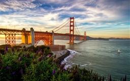 Nice Bridge Scene