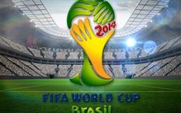 2014 Brasil World Cup