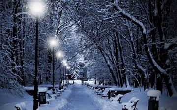 Snowy park at night Mac wallpaper