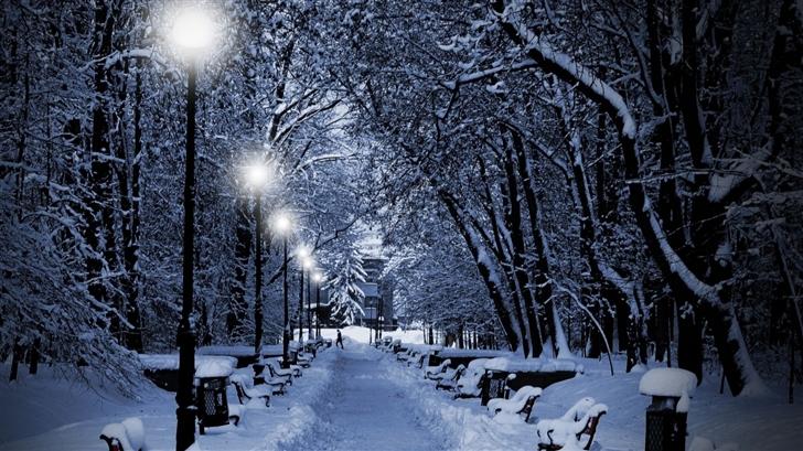 Snowy park at night Mac Wallpaper
