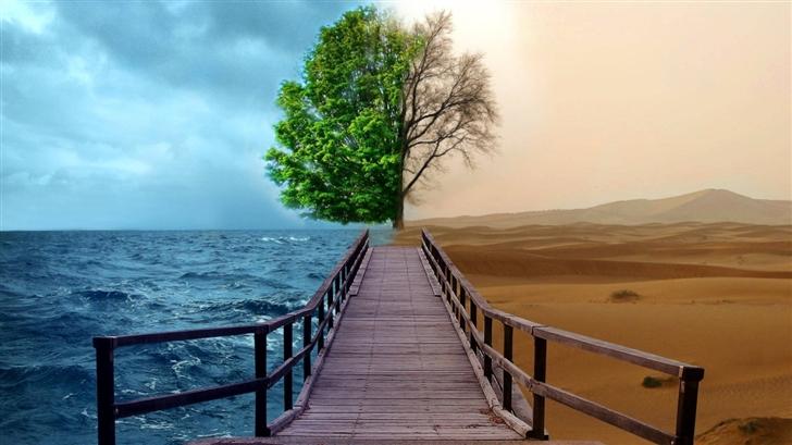 DESERT AND OCEAN Mac Wallpaper