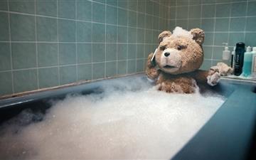 Teddy bear Mac wallpaper