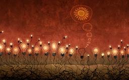 The lamp bulbs