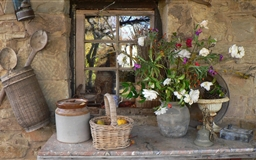 Hovel and flower