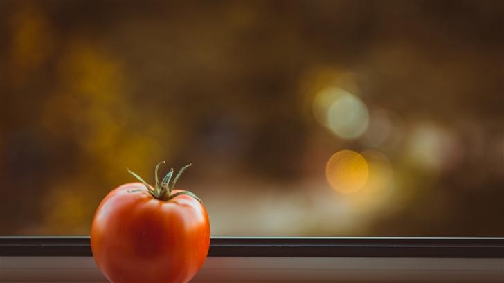The quiet tomato Mac Wallpaper