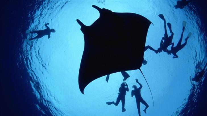 Underwater diving Mac Wallpaper