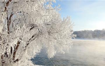 Beautiful winter All Mac wallpaper