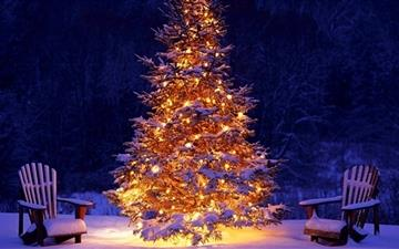 Christmas tree All Mac wallpaper