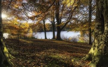 Autumn morning Mac wallpaper