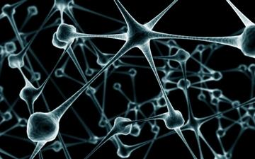 Nerve cell All Mac wallpaper