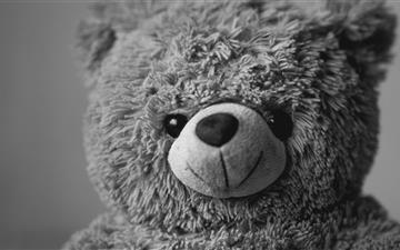 Teddy Bear MacBook Pro wallpaper