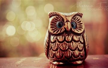 Little Lucky Owl Mac wallpaper