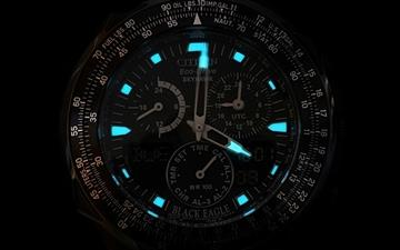 Citizen Wristwatch Mac wallpaper