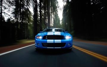 Ford Shelby Blue All Mac wallpaper