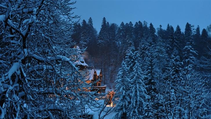 Peles Castle Romania Winter Mac Wallpaper