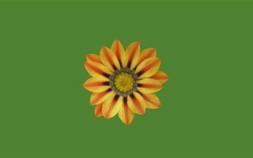 Small Flower Mac wallpaper