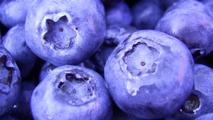 The Blueberry Mac Wallpaper
