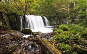 Forest Waterfall Mac wallpaper