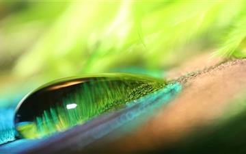 Green Water Drop Mac wallpaper