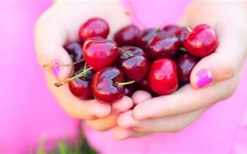 Summer Cherries Mac wallpaper