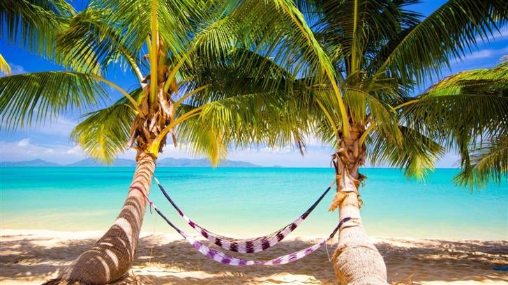Tropical Beach Hammock Mac Wallpaper