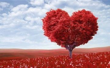 Valentines Day Mac wallpaper