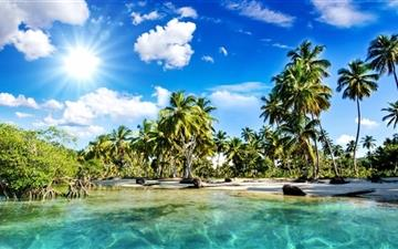 Tropics Palm Trees Sun Beach Mac wallpaper