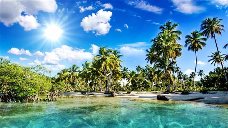 Tropics Palm Trees Sun Beach Mac Wallpaper