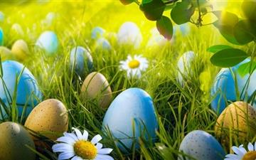 Easter Egg Hunt Mac wallpaper