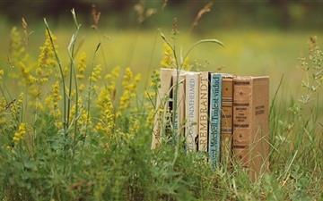 Old Books Outdoors Mac wallpaper