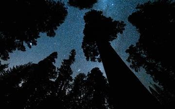 Andromeda And The Milky Way Mac wallpaper