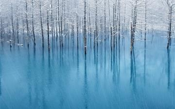 Snow Pond Mac wallpaper