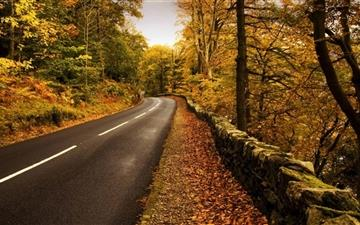 Autumn Road Mac wallpaper