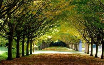 Its Autumn At Anglesey Abbey Cambridgeshire Mac wallpaper