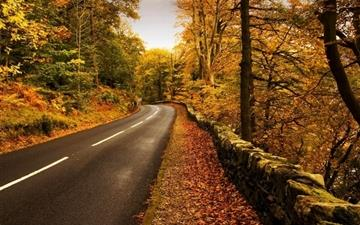 Autumn highway Mac wallpaper