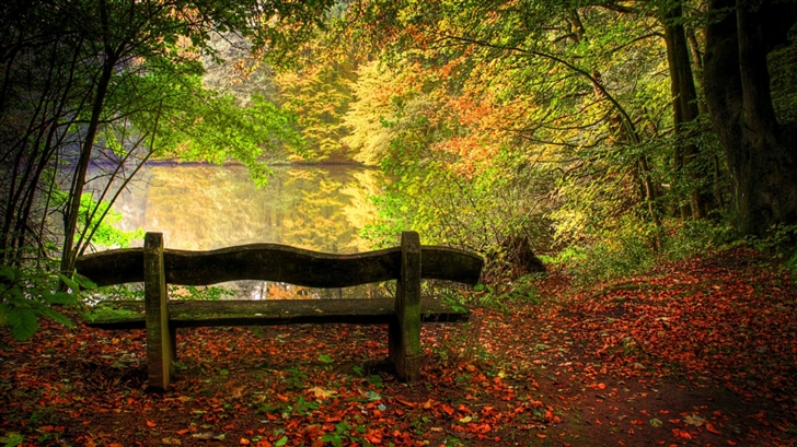 Empty Bench In Fall Scene Mac Wallpaper