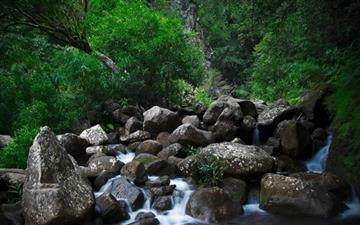 Rocky Forest Creek Mac wallpaper