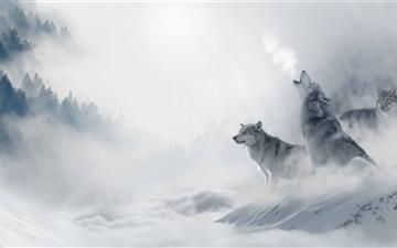 Wolf Howling Mac wallpaper