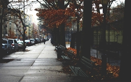 Cold Autumn Day In New York